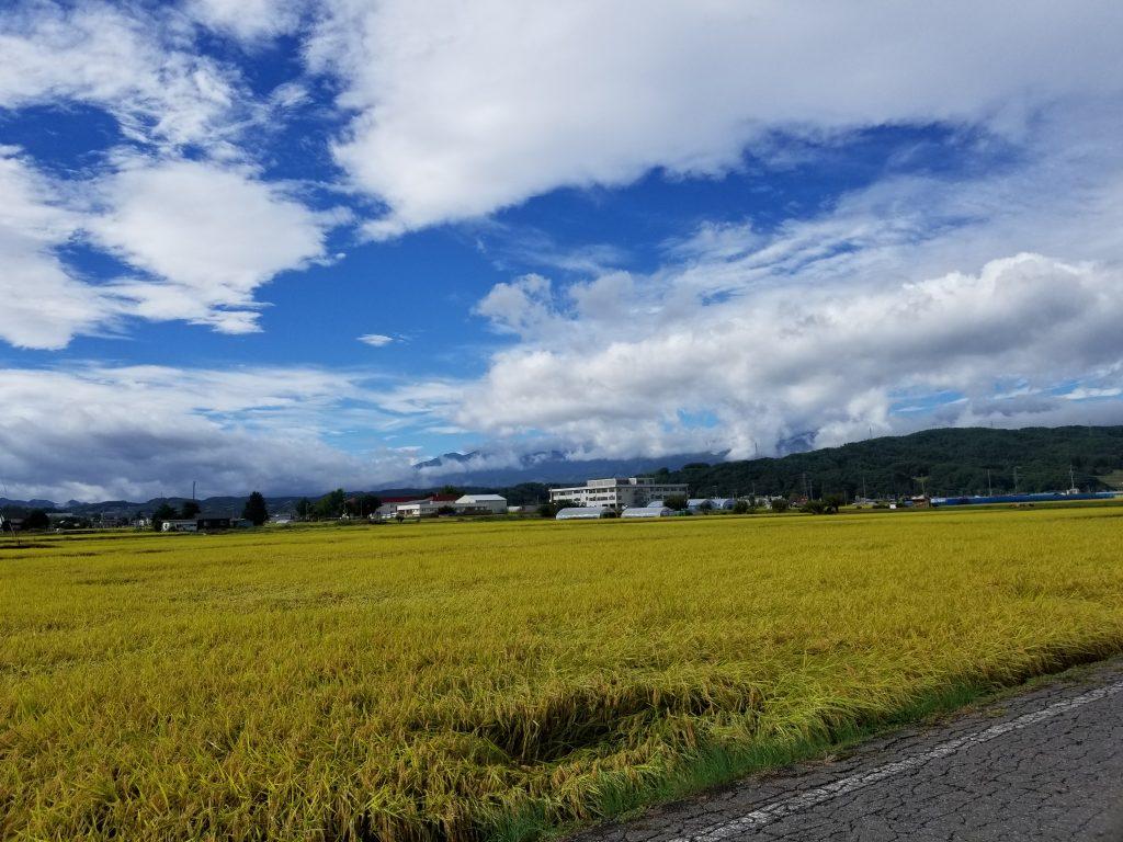 佐久市の田園風景