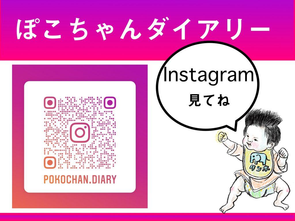 ぽこちゃんダイアリーInstagram