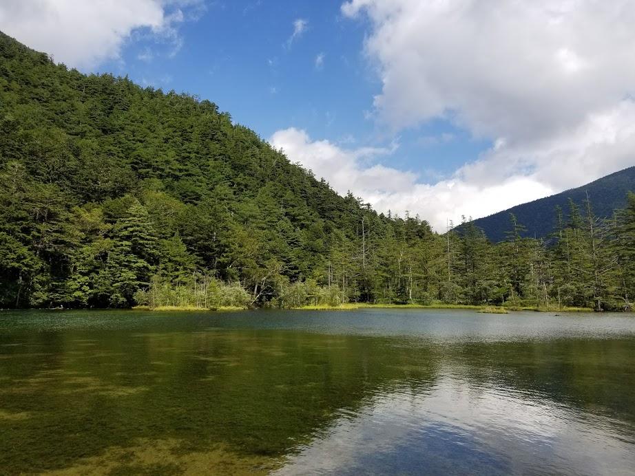 浅く透明度の高い池 明神池